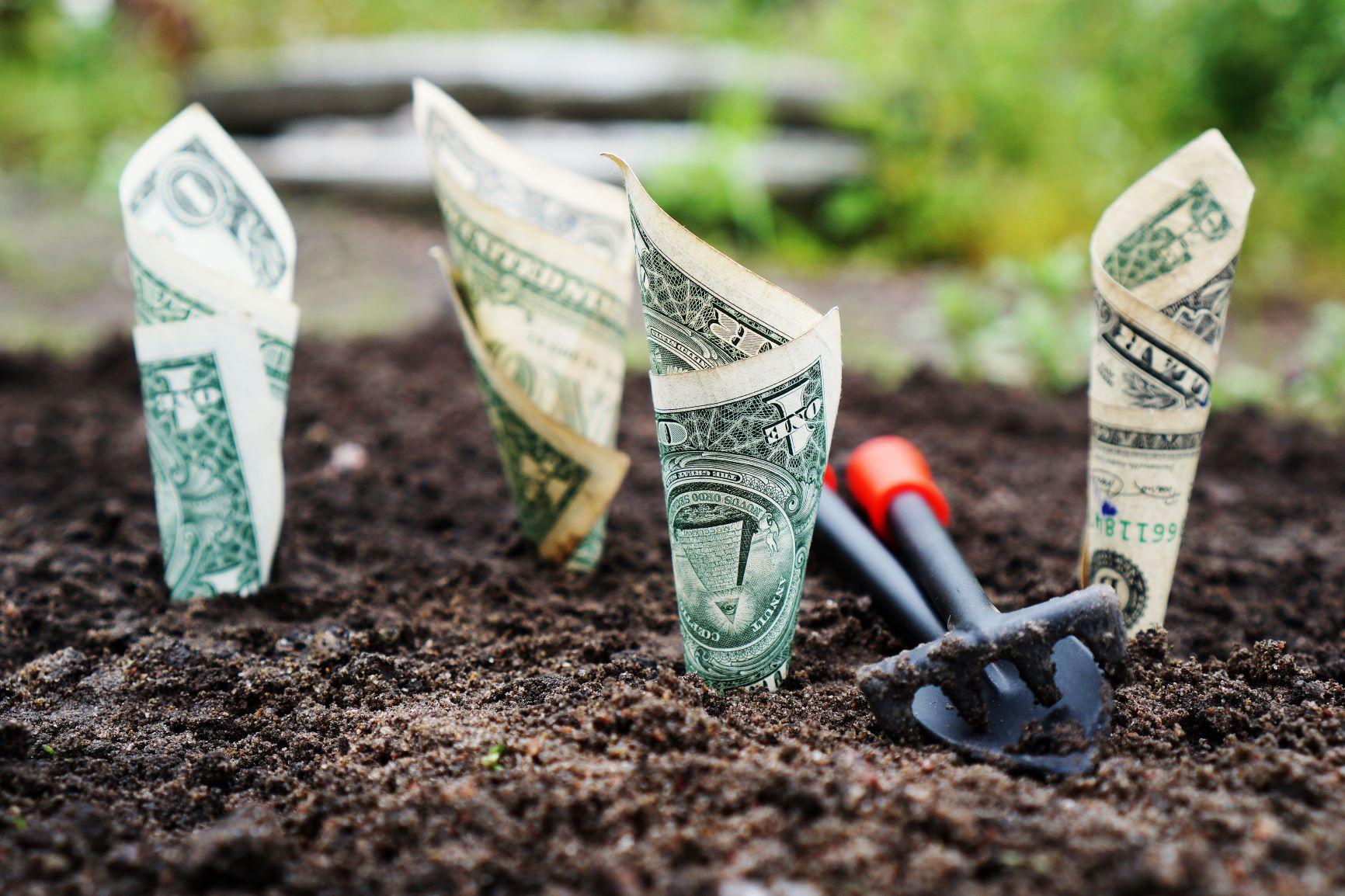 Financial Health Resources